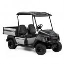 Yamaha UMX EFI Golf Cart / UMAX Golf Buggy